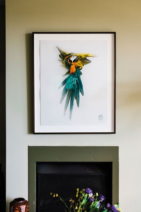 "Macaw by Darwin Sinke & van Tongeren. ""Ferry van Tongeren is a good friend and his taxidermy is next level. I'm glad I got in early because British artist Damien Hirst bought up their entire first collection."""
