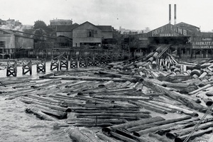 Image result for colonial logging nz