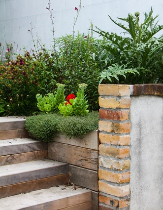 Totara sleeper steps integrated into existing brick wall. Woolly thyme spills over the wall and globe artichokes and sedum provide structure in the soft plantings of flowering perennials.