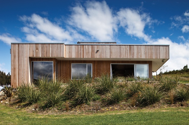 the cedarclad house bunkers down in tussock planting
