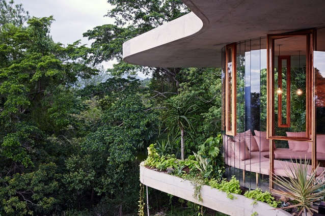 The tropical foliage spills indoors in more ways than one: on the rooftop, a vegetable and herb garden shares space with an amphitheatre made out of shaggy grass mounds.