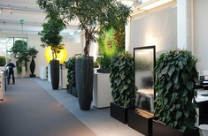 Water for wellbeing: solving design challenges through the presence of water