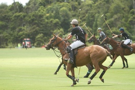 Giveaway: Land Rover NZ Polo Open in Auckland