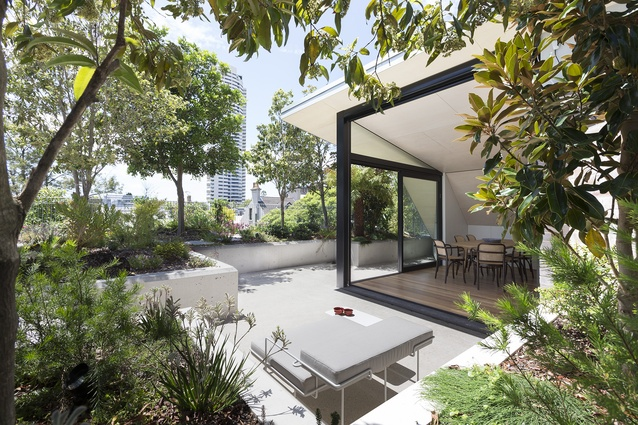 Darlinghurst Rooftop (NSW) by CO-AP (Architects).